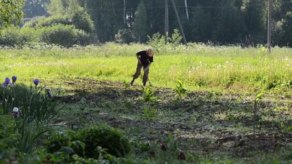 farmer with straw hat grub weeds in garden summer afternoon