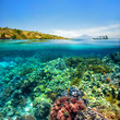 Leinwanddruck Bild - Beautiful Coral reef on background of cloudy sky and volcano