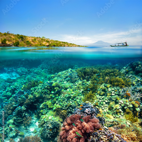 Leinwanddruck Bild Beautiful Coral reef on background of cloudy sky and volcano