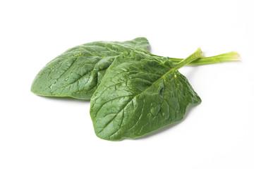 Spinach Leafs