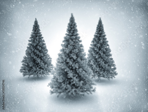 Snowy Christmas Trees