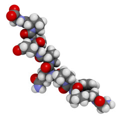Gliadin derived peptide. Immunogenic breakdown product of gluten
