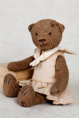 portrait of old fashioned teddy bear