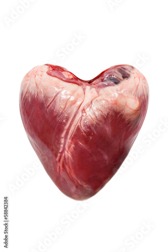 Raw pork heart isolated on a white background