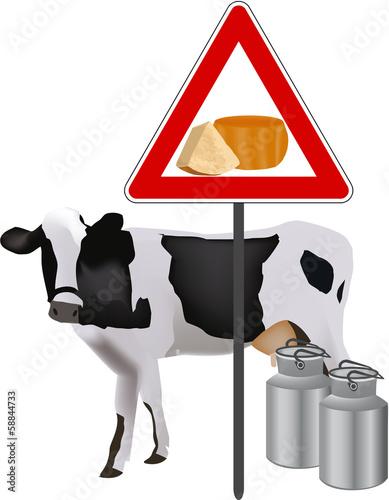 produzione formaggio