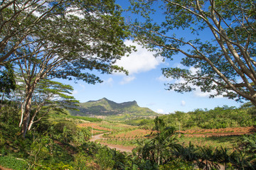 Landscape Chamarel Mauritius Black River District