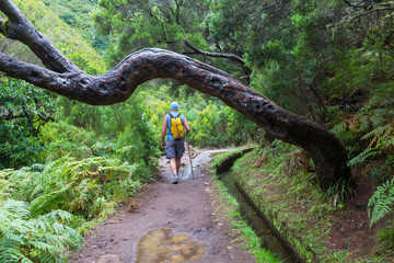 Hike in Madeira