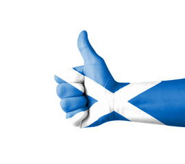 Hand with thumb up, Scotland  flag painted