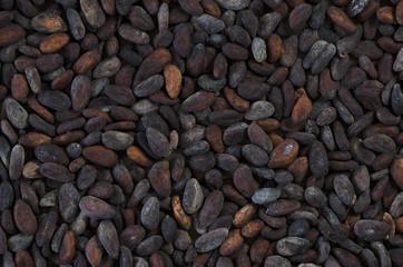 Fermentierte Kakaobohnen Closeup