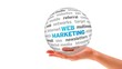 A person holding a 3D web marketing Sphere