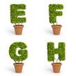 3D font pot plants