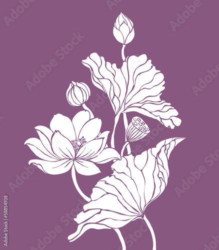 White contour lotus on purple background