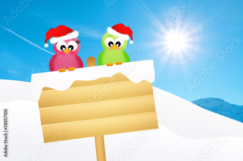 birds on snow sign