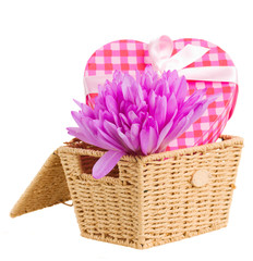 basket with crocus flowers  and gift box