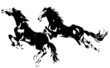 Obrazy na płótnie, fototapety, zdjęcia, fotoobrazy drukowane : 日本画の馬
