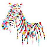 Abstract zebra - vector illustration