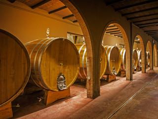 oak wine barrels in winery cellar