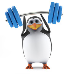 Cute penguin is incredibly strong