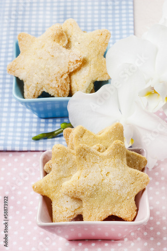Cookies in star shape. Orchid flower in the background