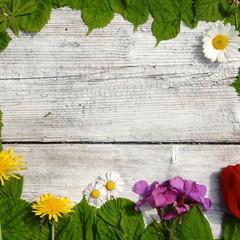 Blumen und Blätter- Hintergrund