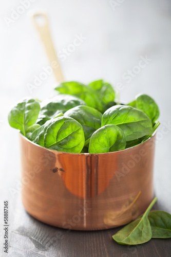 baby spinach leaves in copper pot