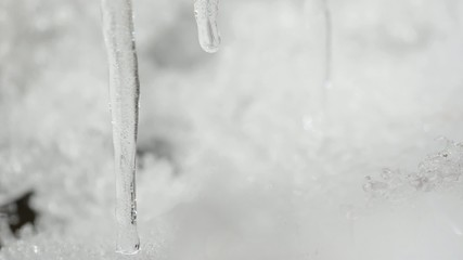 disgelo