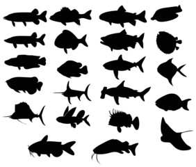 Sets of silhouette Fishes 3 (vector)