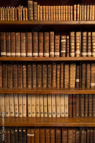 Livres dans une bibliothèque|58894978