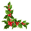 Decorative corner with Christmas holly. Vector illustration. - 58898124