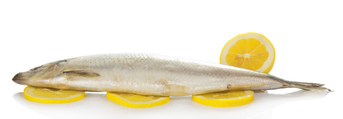 Herring on lemon slices