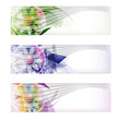 set colored abstract banner and flower