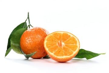 Clementine03