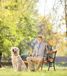 Senior man seated on a bench with his dog relaxing in a park