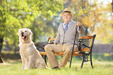 Senior man seated on a bench with a dog relaxing in a park