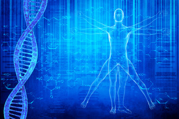 DNA molecules and virtuvian man