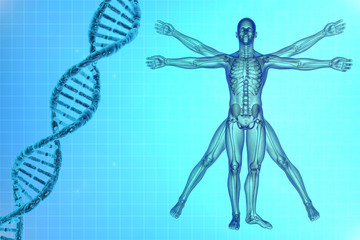 Vitruvian man with DNA