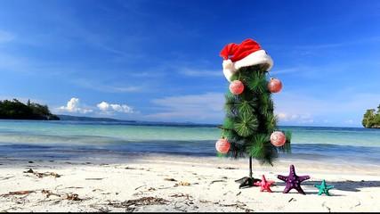 New Year tree and starfish on beach, footage