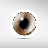 Abstract vector brown eye on grey background