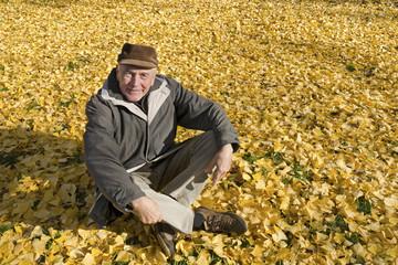 The senior man portrait in ginkgo foliage