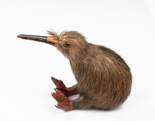 kiwi bird toy sitting on the white background