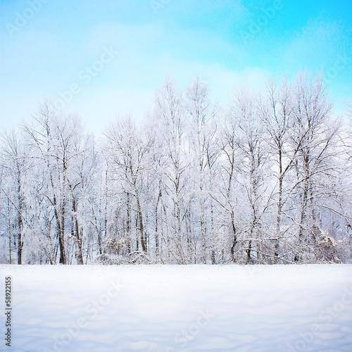 Leinwandbild Motiv Winter scene