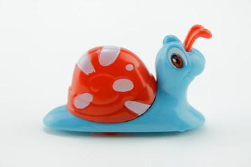 Escargot bleu vue de profil