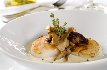 Closeup of scallops with a mushroom cream sauce.