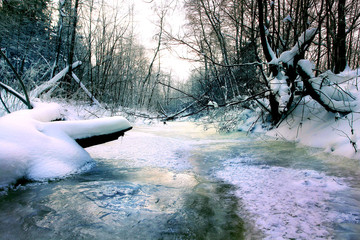 cold winter forest landscape snow