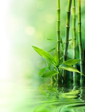 Łodygi bambusa na wodzie - zaciera
