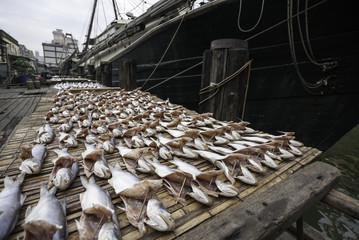Dried sea fish on the pier in the port of Macau.