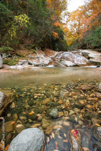 autumn,forest and stream,guang wu shan