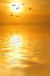 en busca del sol dorado