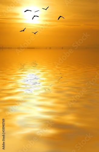 Fotobehang Een Hoekje om te Dromen en busca del sol dorado