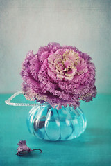 Decorative cabbage flower in a vase.